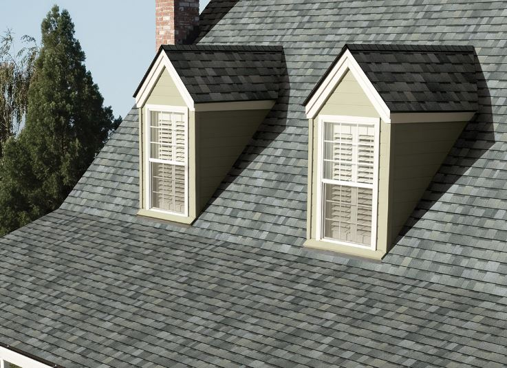 Buddys Roofing Images
